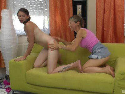 Lesbian amateur sex on burnish apply siamoise between a younger and a mature babe